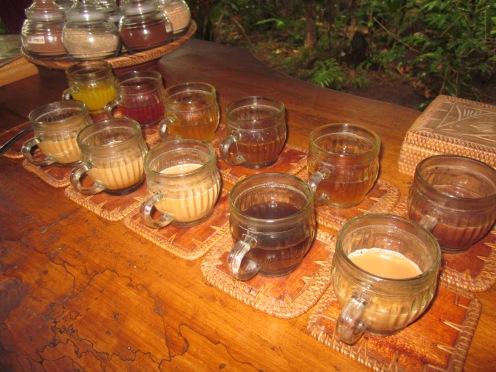 Balinese Coffee Tasting