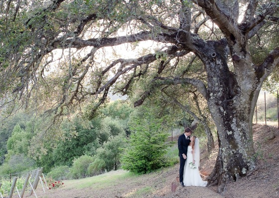 Mountain Winery Wedding