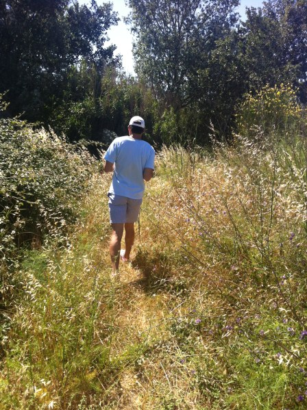 Hiking in Arles