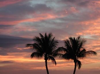 honeymoon blog