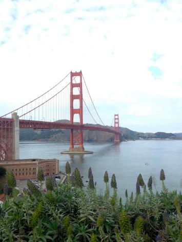 The views of the Golden Gate Bridge in San Francisco never get old