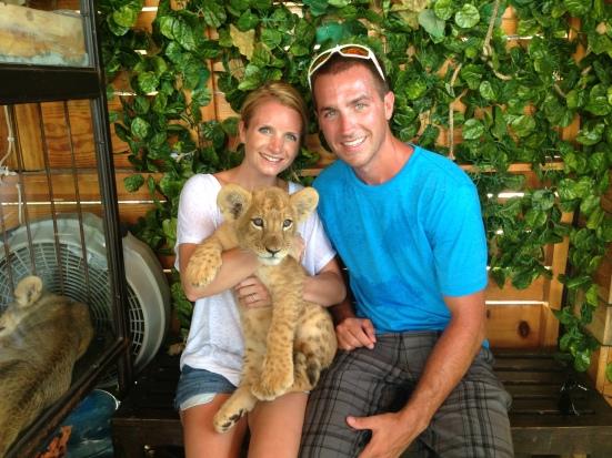 Baby lion at the Cabo San Lucas marina