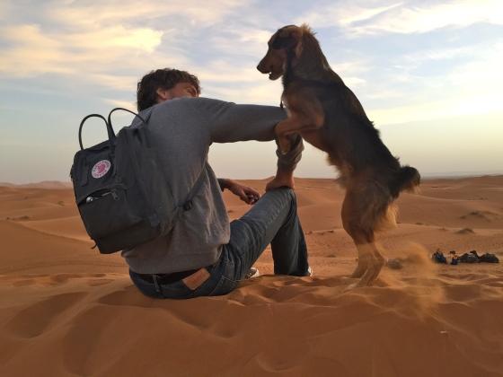 Desert dog loved Aaron, too