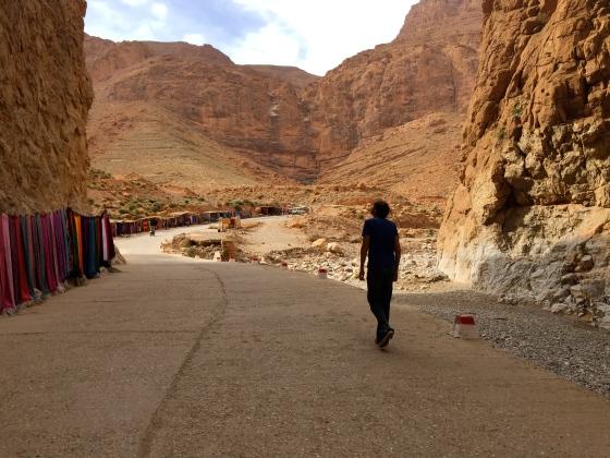 Admiring Todra Gorge