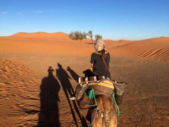 Camel trekking!