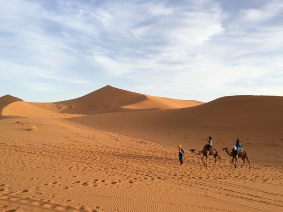 Camel trekking in the Sahara