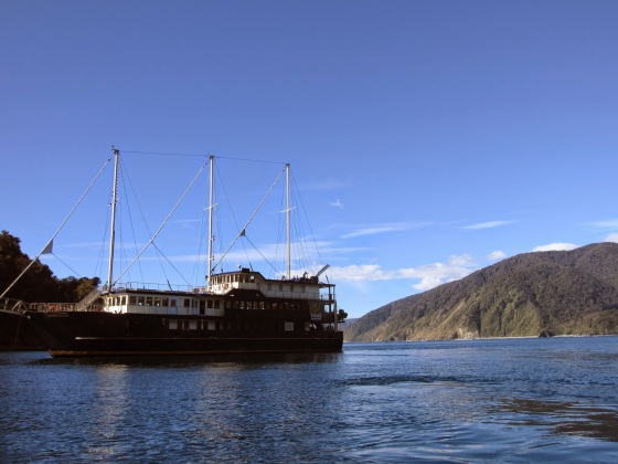 Overnight cruise ship in Milford Sound