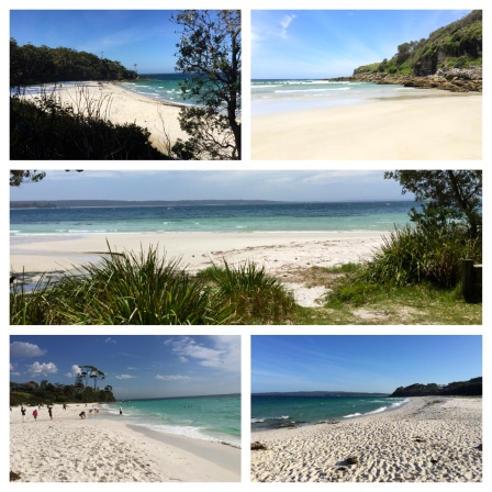 Biggest dilemma in Jervis Bay: which beach is the best?
